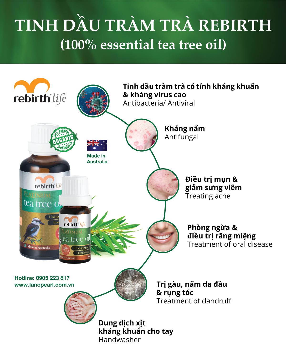 Công dụng tinh dầu tràm trà kháng khuẩn, trị mụn, kháng virus - Tea tree oil